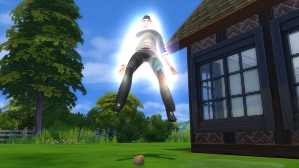 Mod The Sims: Become a Sorcerer by CardTaken