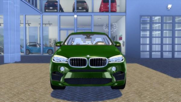 Lory Sims: BMW X6 M 2016