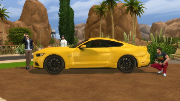 Lory Sims: Ford Mustang GT
