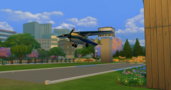 Mod The Sims: The Flight Lounge by Innamode