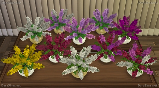 Dara Sims: Flower Set 2