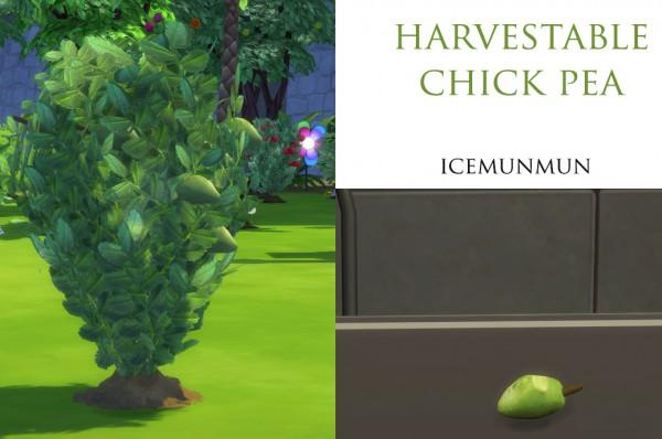 Mod The Sims: Custom Harvestable ChickPea by icemunmun
