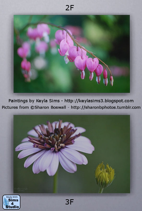 Keyla Sims: Boswall  Paintings