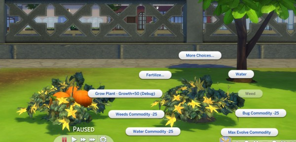 Mod The Sims: The Pumpkin Project by icemunmun