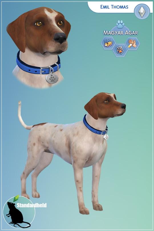 Simsworkshop: My dog Emil by Standardheld