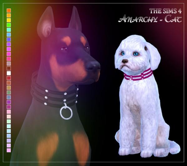 Anarchy Cat: Collar dog 2