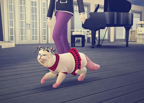 Studio K Creation: Cat dress N1