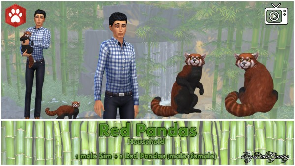Mod The Sims: Red Panda Cat by Bakie