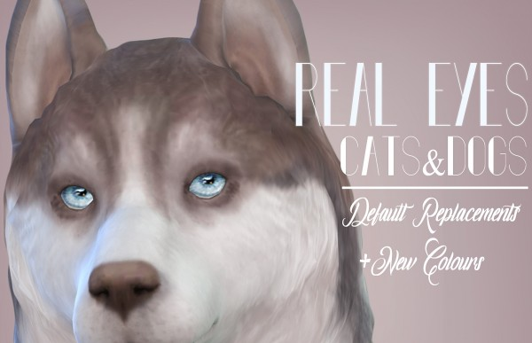 Mod The Sims: Real Eyes Cats and Dogs by kellyhb5
