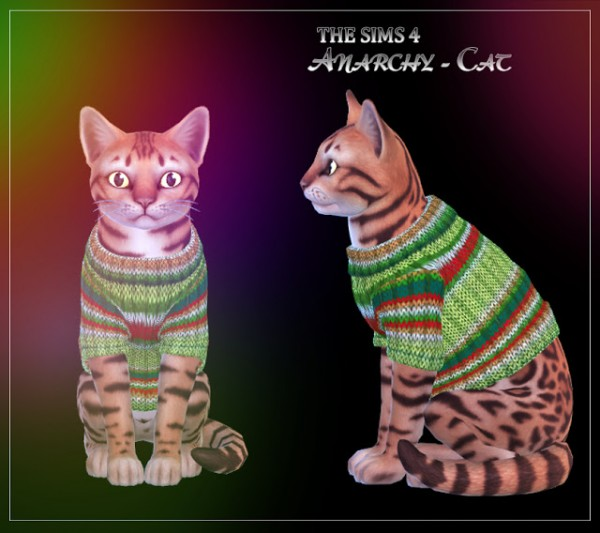 Anarchy Cat: Sweater for cats 1