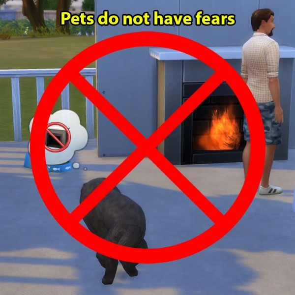 Mod The Sims: Pets do not have fears by sasha973