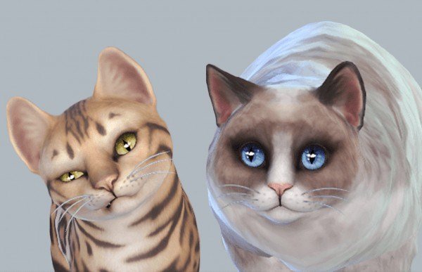 Mod The Sims: Default Whisper Eyes Cats and Dogs by kellyhb5