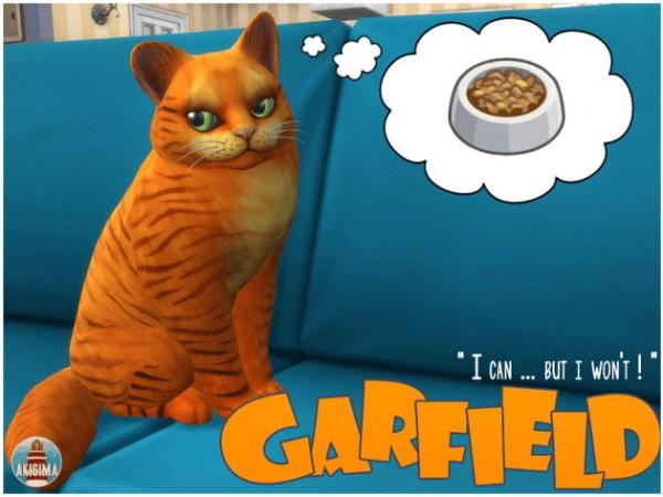 Akisima Sims Blog: Garfield