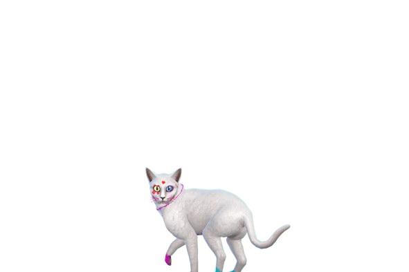 Luniversims: Quinn cat by LucaCastelli15