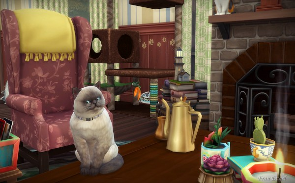 Frau Engel: Cats and Dogs House