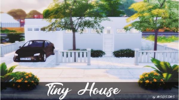 MSQ Sims: Tiny house
