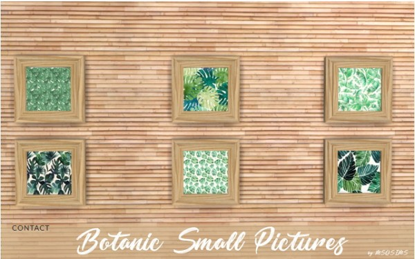 MSQ Sims: Botanic small pictures