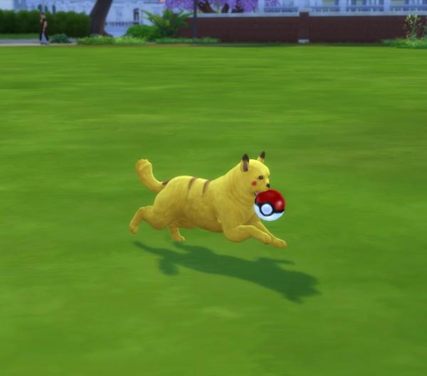Mod The Sims: Poké Ball Pet Toy by New Era