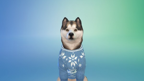 Simsworkshop: Xmas sweaters for large dogs by Anichelle