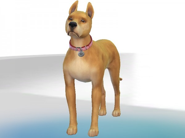 The Sims Resource: Miss Marla dog by Kidakane