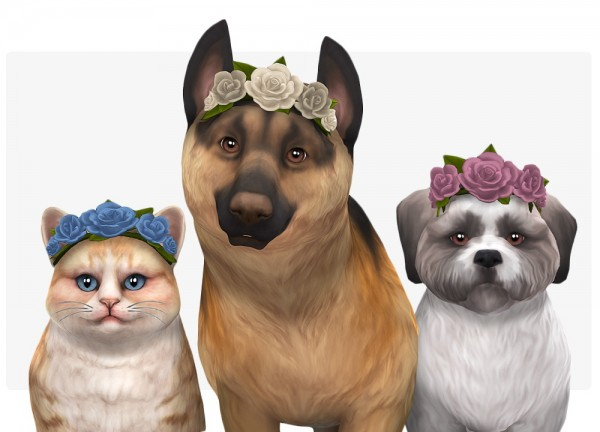 Nolan Sims: Crown of flowers for pets