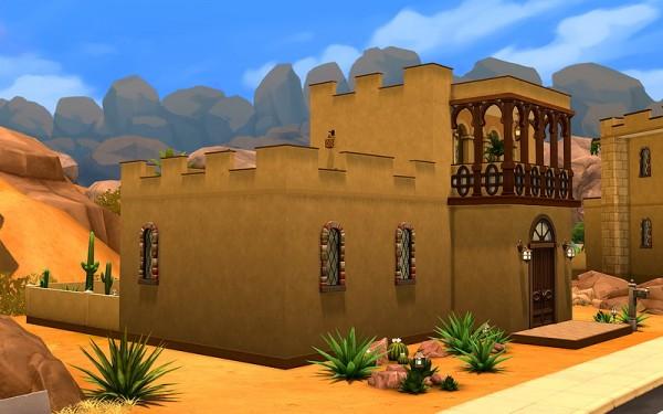 Ihelen Sims: Desert Cactus by Rany Randolff