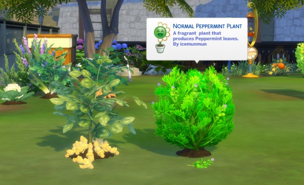 Mod The Sims: Harvestable Ginger And Peppermint by icemunmun
