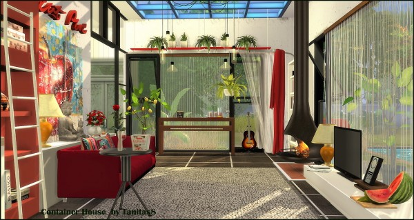 Tanitas Sims: Container House