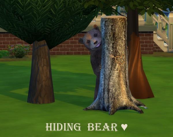 Leo 4 Sims: Hiding Bear Decor