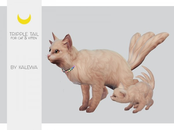 The Sims Resource: Cat and Kitten   Three Tails by Kalewa a