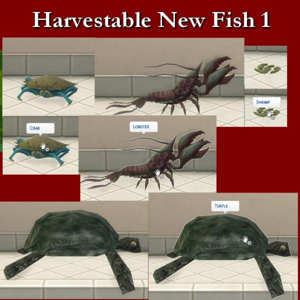 Simsworkshop: Harvestable New Fish by Leniad