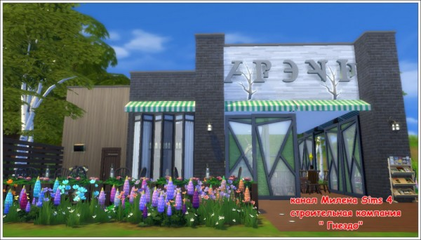 Sims 3 by Mulena: Bar Rural area