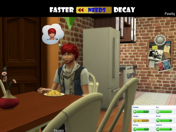 Mod The Sims: Faster Needs Decay by Pawlq
