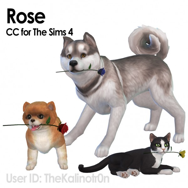 Mod The Sims: Rose for your Animals by TheKalino