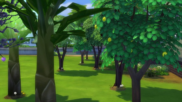 Mod The Sims: No watering trees by moddymel