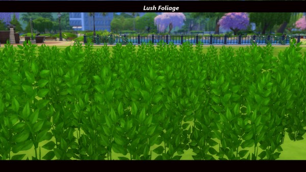 Mod The Sims: Early Spring: Fields of Wildflowers by Snowhaze