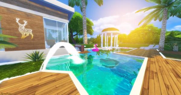 Mony Sims: Casa Natal Tropical