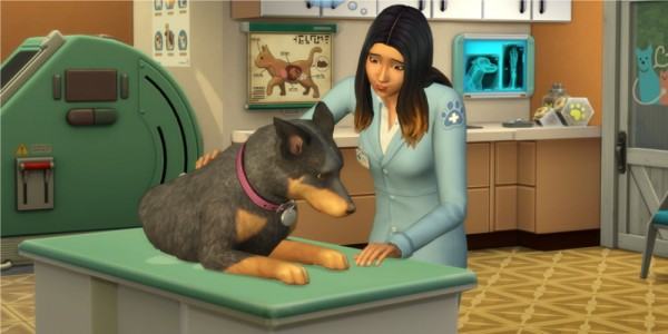 Mod The Sims: Animal Rescue Mod and Career by PurpleThistles