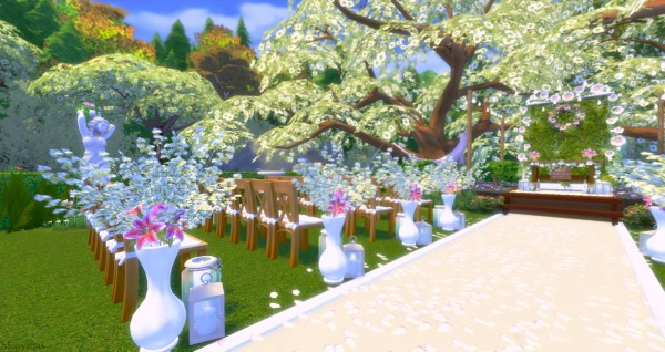 Mony Sims: Field Wedding