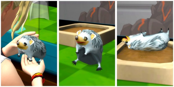 Mod The Sims: SEGA Certified Hedgehogs by woopa20