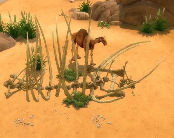 Simsworkshop: Castaway Stories Bones by BigUglyHag