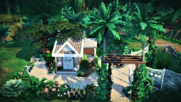 Agathea k: Mini Jungle House