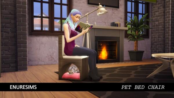 Enure Sims: Pet Bed Chair
