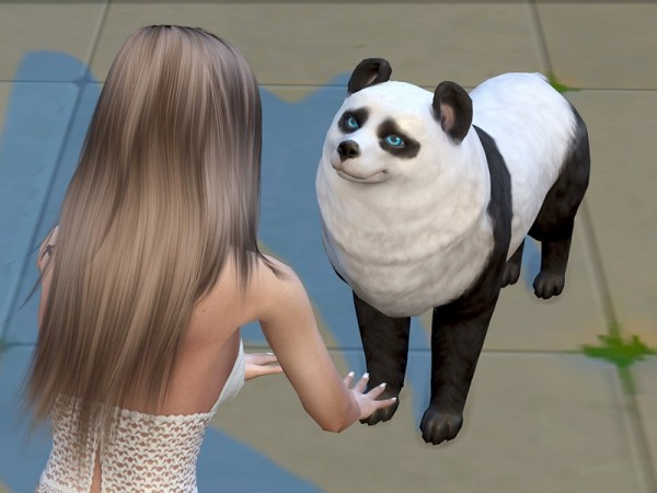 The Sims Resource: Panda Maximus by Sims House