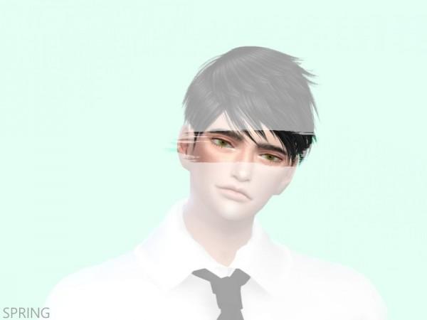 The Sims Resource: Seasonal eyes by Scevola