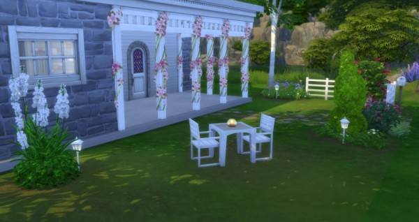 Sims Artists: Country Starter