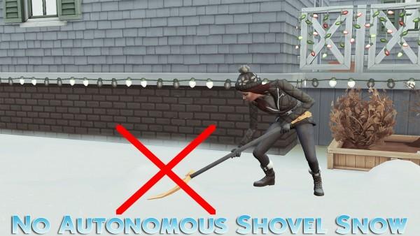 MSQ Sims: No Autonomous Shovel Snow