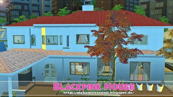 Homeless Sims: K Pop: Blackpink House