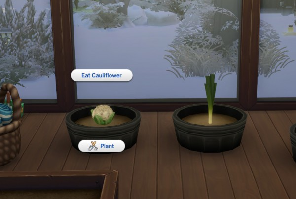 Mod The Sims: Harvestable Cauliflower and Leek by icemunmun