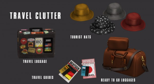 Leo 4 Sims: Travel Clutter